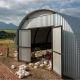Free Range Broiler chicken house